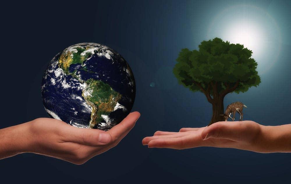 Achat reconditionné : c'est bon pour votre porte-monnaie et l'environnement